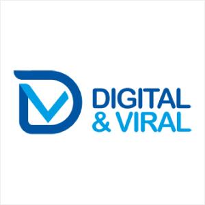 D&V International